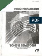 Paulinho Nogueira - Tons e Semitons