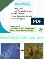 Expo Aves 2