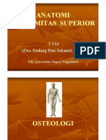 Anatomi-EXTREMITAS SUPERIOR.pdf