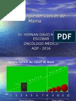 2. Epidemiologia Cancer de Mama