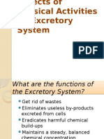 Effects of Physical Activities on Excretory System