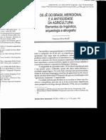 noelli_1996_agricultura