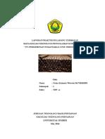 LAPORAN PRAKTIKUM LAPANG TEMBAKAU.doc