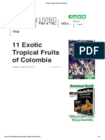 11 Exotic Tropical Fruits of Colombia