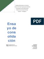 ensayo de consolidacion.docx
