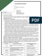 Programación-Anual Primero Vidal