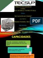 Exposicion de Geología