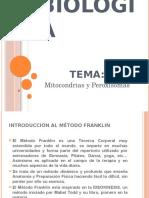 MITOCONDRIAS Y PEROXISOMAS