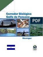 Pro Arc a 2001 Golfo Fonseca