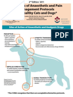 Examples of Anaesthetic and Pain Management Protocols for Healthy Cats and Dogs