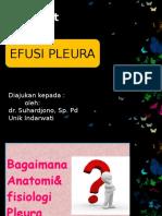 EFUSI PELURA 4
