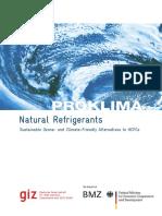 Natural Refrigerants-GIZ 2008