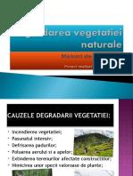 Degradareavegetatiei Naturale. Masuri de Protectie (Schiopu Lilia)