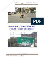 2.- Diagnostico Puente Burgos