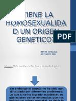 Tiene la Homosexualidad Un Origen Genetico
