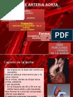 Sistema de la aorta.pptx