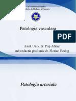 Curs Patologie Vasculara