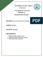 Monografia Metabolismo Celular
