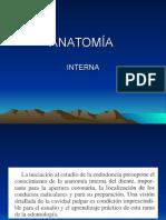 ANATOMÍA-INTERNA-1.ppt