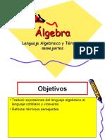 Lenguaje Algebraico - Reduccion de Terminos Semejantes