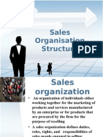 Sales Organisation Structure
