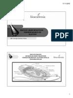 Enterobhacterias