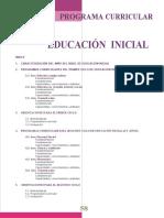 dcn2010_III_inicial.doc