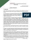 PRINCIPIOS BASICOS DE LA CONSTITUCION BOLIVIANA