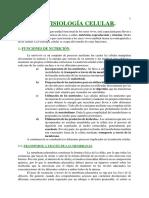 tema12.pdf