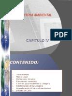 Hg1 Ficha Ambiental