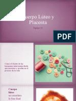 Cuerpo Lúteo y Placenta