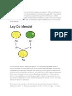 Leyes de Mendel Estructura Adn