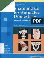 Anatomia de Los Animales Domesticos Koning 1