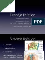 Drenaje Linfatico Expo (2)