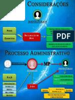 Demais Considerações Sobre a Lei e Do Processo Administrativo