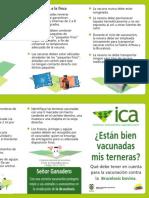 Folleto Vacunacion Brucelosis ICA
