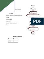 Pseudocódigo  Diagrama perimetros