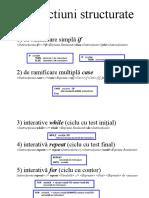 Instructiuni structurate.doc