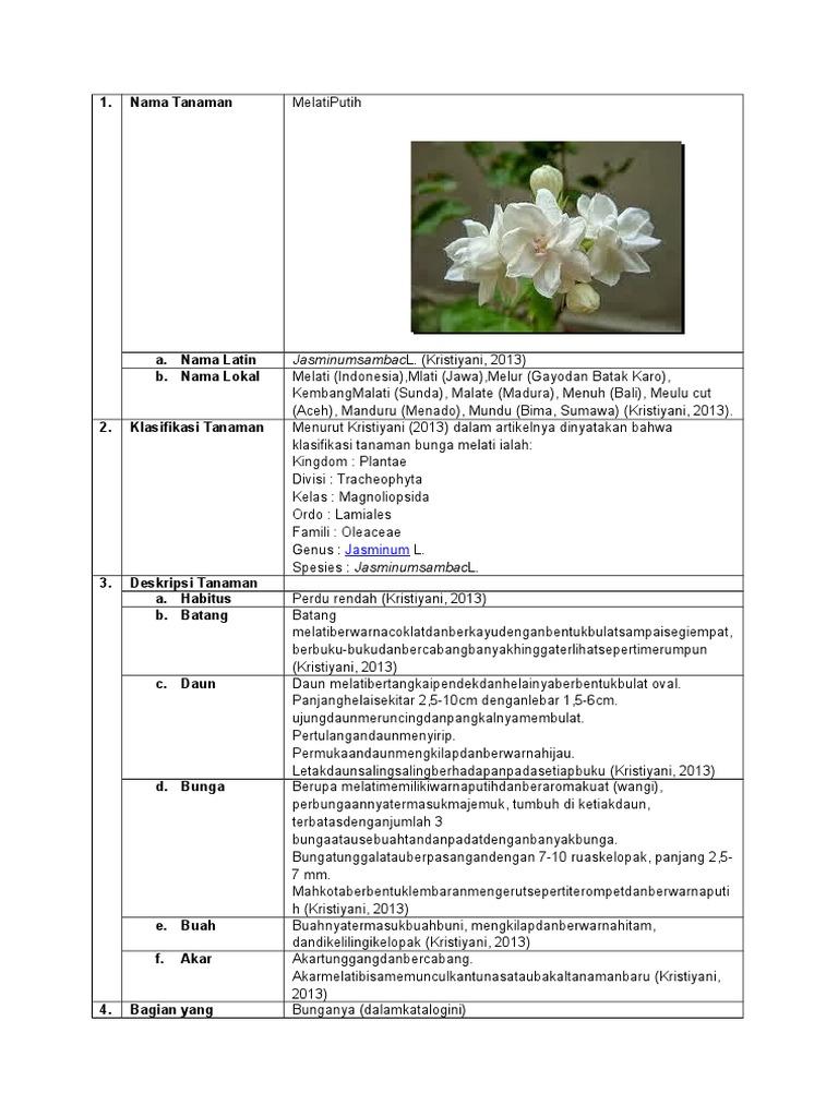 Klasifikasi Bunga Melati
