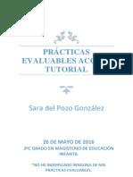 Prácticas evaluables accion tutorial Sara del Pozo González.pdf