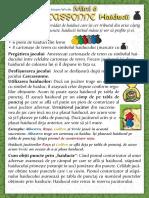 Carcassonne Extensia Mini 6 Haiducii(Full Permission)