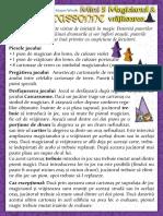 Carcassonne Extensia Mini 5 Magicianul Si Vrajitoarea(Full Permission)