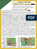 Carcassonne Extensia Mini 4 Minele de Aur(Full Permission)