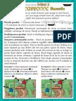 Carcassonne Extensia Mini 3 Bacurile(Full Permission)