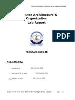 CAO Report
