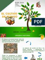 Cultivo de Mango - Generalidades