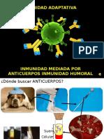 APO 8 Inmunidad Humoral 2016 Final (1)