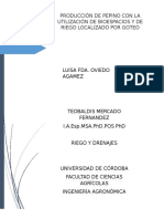 Proyecto Pepino
