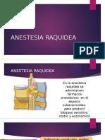 ANESTESIA RAQUIDEA FINAL.pptx