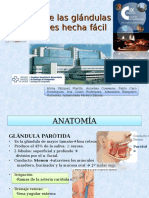 43 Patologia de Las Glandulas Salivales Hecha Facil